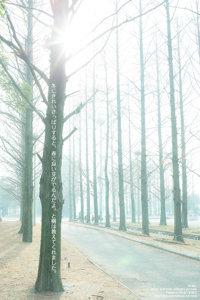 941.冬はきれいにする季節